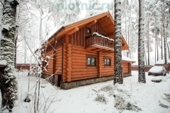 Plotnic.ru_House_051