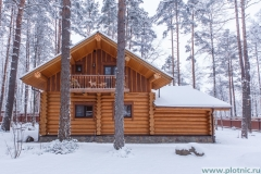 Pkotnic.ru_Losevo_5.26_33